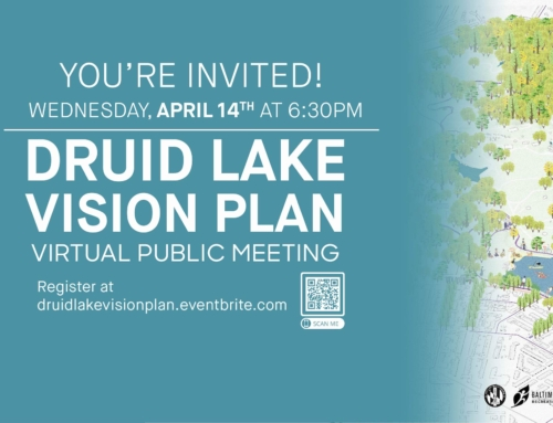 Druid Lake Vision Plan – Virtual Public Meeting