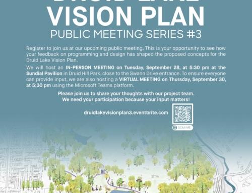 Druid Lake Vision Plan – Public Meeting #3